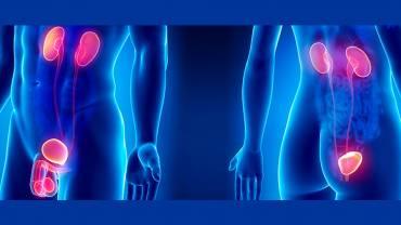 ¿Quién debe asistir a la consulta de Urología?